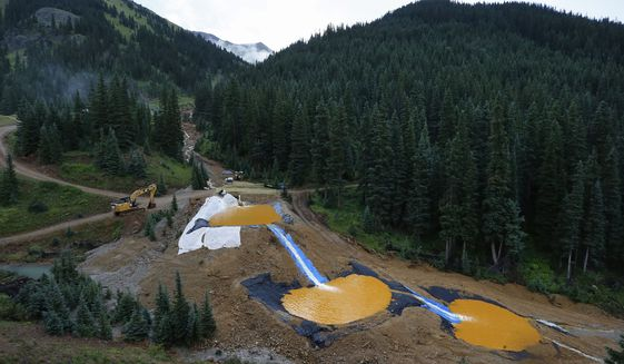 Gold King Mine Leak and Cleanup Operation